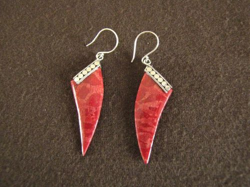 Silver Red Coral Tusk / Tooth Earrings